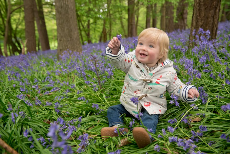 Hertfordshire-bluebell-photographer-Tori-Deslauriers-008