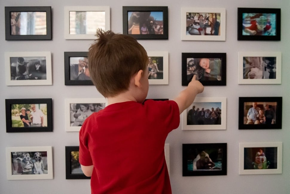 child looking at family photos