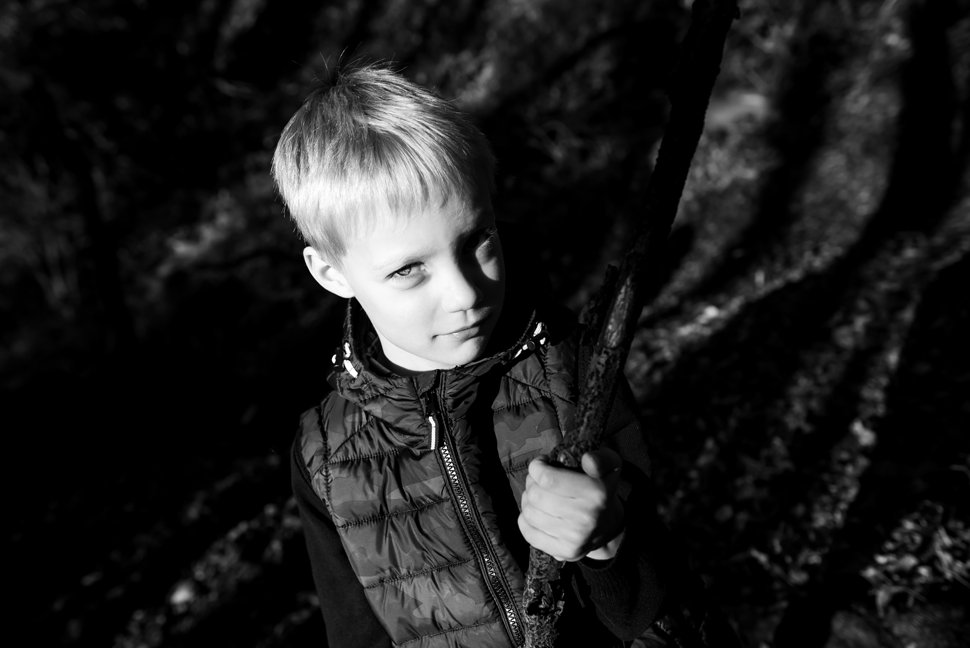 dramatic lighting at forest photoshoot